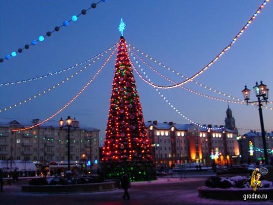 Наконец-то елка зажжена. Парад Дедов Морозов 2013 в Гродно.